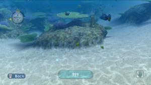 I found a new fish!